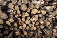 Small timber Stock Photo