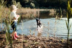 A small toddler boy with a dog standing by a lake at sunset. Copy space. A small toddler boy with a hat and a dog standing by a lake at sunset. Copy space royalty free stock image