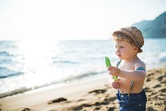 A small toddler boy with hat and shorts standing on beach on summer holiday. Copy space. A small toddler boy with hat and shorts standing on beach on summer royalty free stock photo