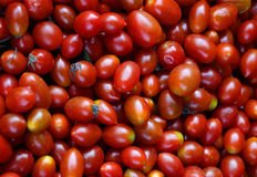 Small tomato fresh on thai markets. Color red every items Royalty Free Stock Images