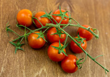 Small tomatoes on a branch against a dark board Royalty Free Stock Images