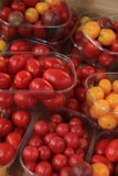 Small tomatoes at a market Royalty Free Stock Images