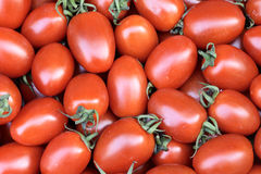 Small tomatos Royalty Free Stock Image
