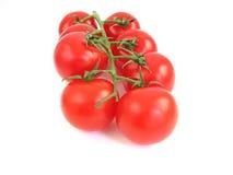 Small tomatos Royalty Free Stock Image