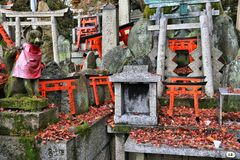 Small torii gates Royalty Free Stock Photography