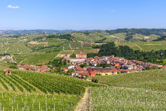 Small town and green vineyards in Italy. royalty free stock photos