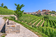 Small town on hill and vineyards in Italy. Stock Image