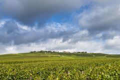Mutigny and Church in Vineyards royalty free stock image