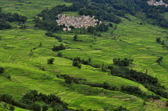 Small town in terraced fields. A small town in the green terraced fields royalty free stock photography