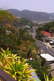 Small town with tiled roofs and part of palm jungle Royalty Free Stock Images