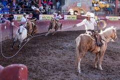 Mexican Rodeo in San Luis Potosi Mexico royalty free stock photos