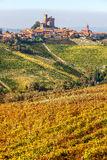 Small town and vineyards in Piedmont, Italy. Royalty Free Stock Photo