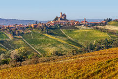 Small town and yellow vineyards in Piedmont, Italy. Stock Images
