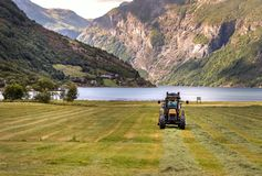 Small tractor with round baler haymaking on a field in Geiranger, Norway.  royalty free stock images