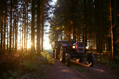 Small tractor with trailer Royalty Free Stock Images