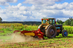 Small tractor working in the field. smallholder agriculture. Royalty Free Stock Image
