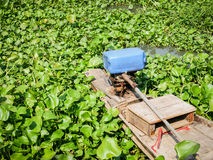 Small traditional wooden boat surrounded by water hyacinth in countryside pond in Thailand Royalty Free Stock Photo