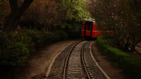 This is a small train for children to ride in the park. royalty free stock image