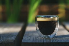 Small transparent double wall glass cup of fresh brewed coffee placed on a natural wooden surface. In front of a plant filled pond royalty free stock photos