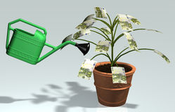 Small tree with 100 euro banknotes watered. A small tree with 100 euro banknotes instead of leaves, planted in a vase, is watered by a green watering can Stock Illustration