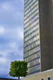 Small tree and big building Royalty Free Stock Photos