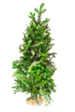 Small tree Christmas tree on a stand Stock Photos