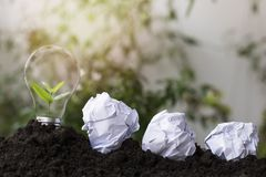 Small tree grow up on paper recycle, concept as   save World environment day reforesting eco bio arbor CSR ESG ecosystems reforest. Tree planting and growth up Stock Image