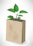 Small tree growing out of paper bag Stock Photography
