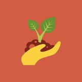 Small tree in a hand. Icon small tree in a hand Stock Images