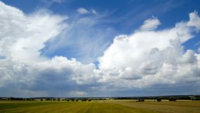 Small tree on the horizon in rural landscape. With blue sky Royalty Free Stock Photos