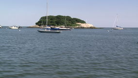 A small tree lined island with boats moored in front (2 of 3). A view or scene on the water stock footage