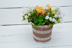 Small tree potted plant on wood shelf decorated interior room with white wall. Decorated Royalty Free Stock Photos