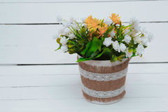 Small tree potted plant on wood shelf decorated interior room with white wall Stock Image