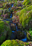 Small trickle of water flowing over moss soaked rocks by the Watkins path, Snowdon Royalty Free Stock Photography