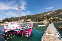 Pink sheep in the harbor. Small trip vessel painted in pink royalty free stock photos