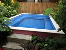 Small Tropical Hotel Swimming Pool. Photo of small tropical hotel swimming pool in merida yucatan mexico Royalty Free Stock Photos