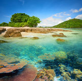 Small tropical island with a coral reef. Stock Images