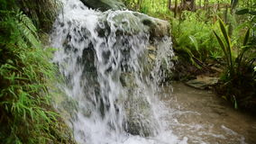 Small tropical jungle waterfall, Java, Indonesia stock footage
