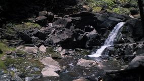 Small Tropical Waterfall stock video footage