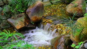 Small tropical waterfall in garden stock video