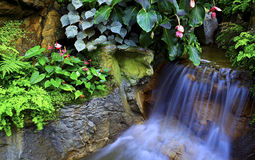 Small tropical waterfall Royalty Free Stock Photos