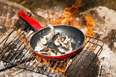 Small Trouts Cooking on a Campfire. Small Trouts Cooking in the Pan on a Campfire Stock Photography
