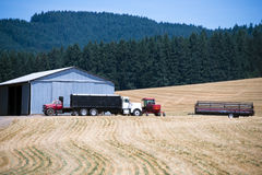 Small trucks and tractor on field at harvest time Royalty Free Stock Photo