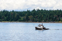 Small Tug in Nanaimo Harbor. Vancouver Island, Canada. A Forested Shore is Visible in Background Stock Photography
