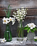 Small vases and bottles with spring flowers Royalty Free Stock Image