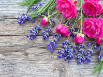 Small vibrant pink roses and provence lavender on the wooden boa Stock Images