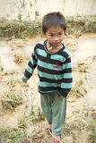 Small Vietnamese boy in rice fields Stock Photos