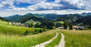 Small village in the Alps. Small village and green fields in the Alps, cloudy weather Royalty Free Stock Images