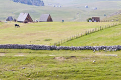 Small village in Durmitor. Royalty Free Stock Photography