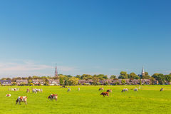 Small village in the Dutch province of Utrecht Royalty Free Stock Image
